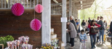 Besök marknad i Täby Park